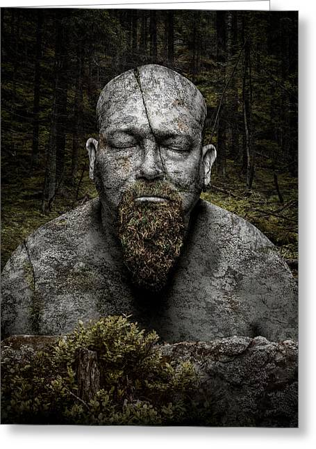 Stones Photographs Greeting Cards - Petrified Greeting Card by Petri Damsten