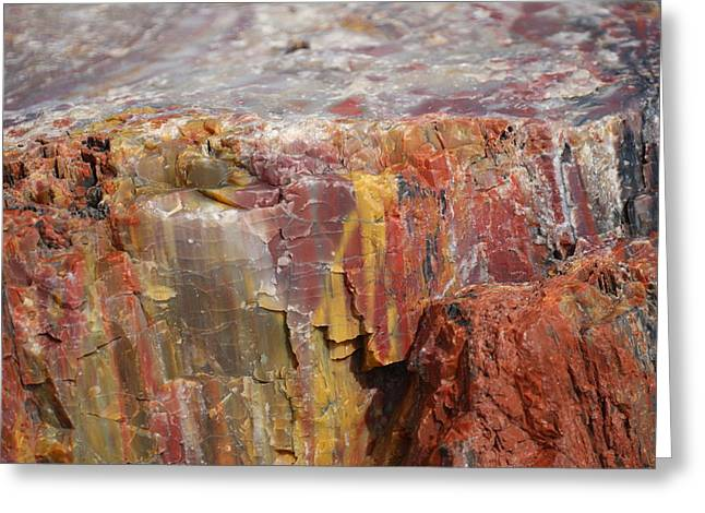 Petrified Greeting Cards - Petrified Wood 2 Greeting Card by Ernie Echols