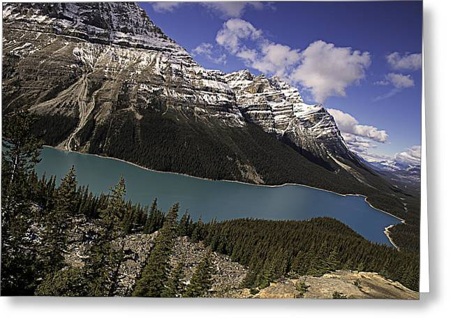 Fall Trees Greeting Cards - Peyto Lake Greeting Card by John Gilbert