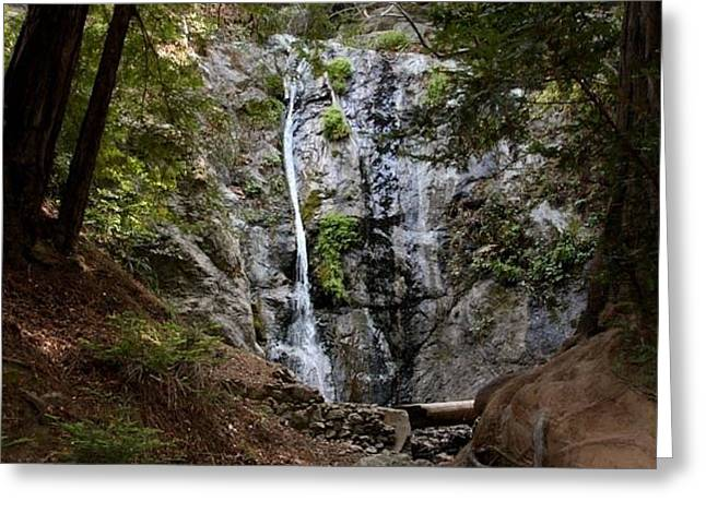 Big Sur Greeting Cards - Pfeiffer Falls Greeting Card by Patricia  Wensel