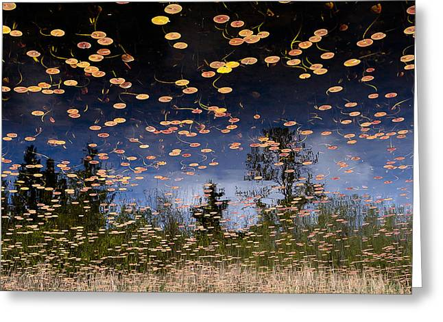 Lily Pads Greeting Cards - Phantom Lake Greeting Card by Alex Levine