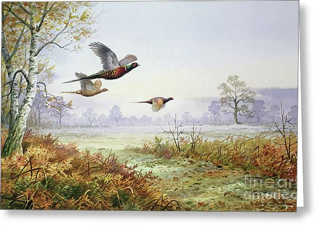 Pheasants In Flight  Greeting Card by Carl Donner