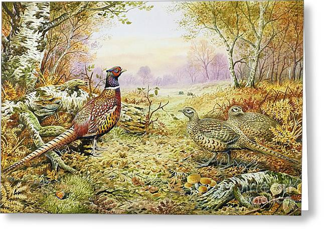 Fall Grass Paintings Greeting Cards - Pheasants in Woodland Greeting Card by Carl Donner