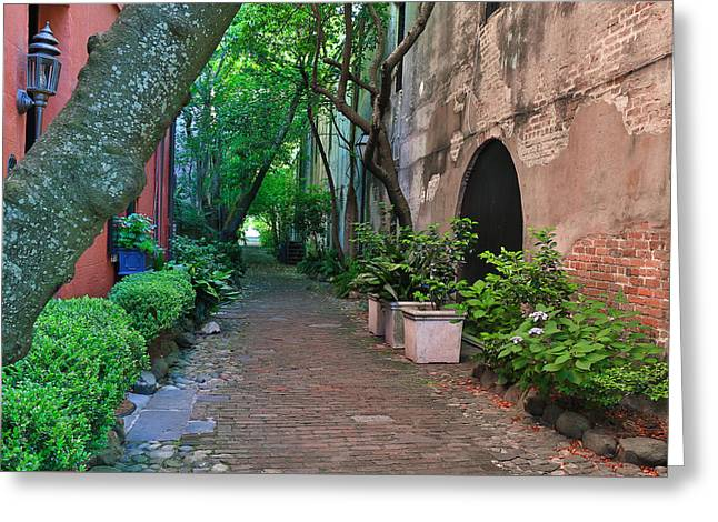 Philadelphia Alley Greeting Cards - Philadelphia Alley in Charleston SC Greeting Card by Donnie Whitaker