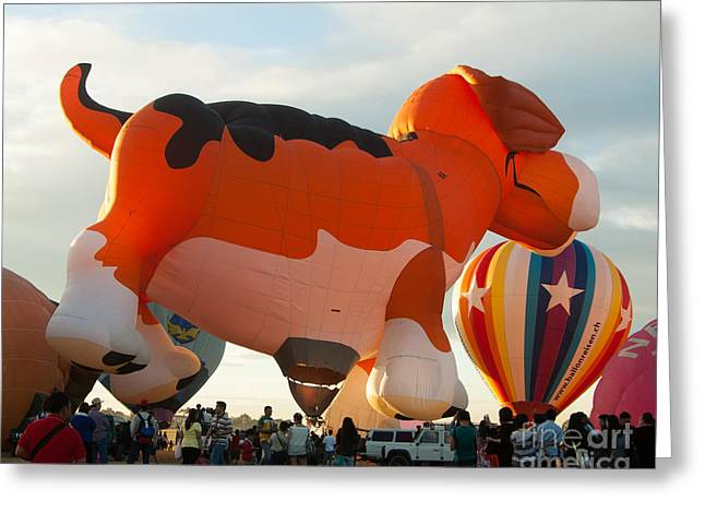 Festivities Greeting Cards - Philippine Hot Air Balloon Festival Greeting Card by Stacey Leigh Gonzalez