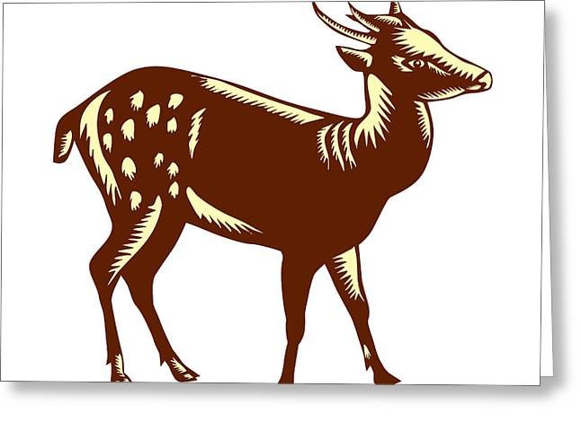 Philippine Spotted Deer Woodcut Greeting Card by Aloysius Patrimonio