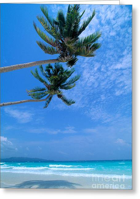 Philippines, Boracay Isla Greeting Card by William Waterfall - Printscapes