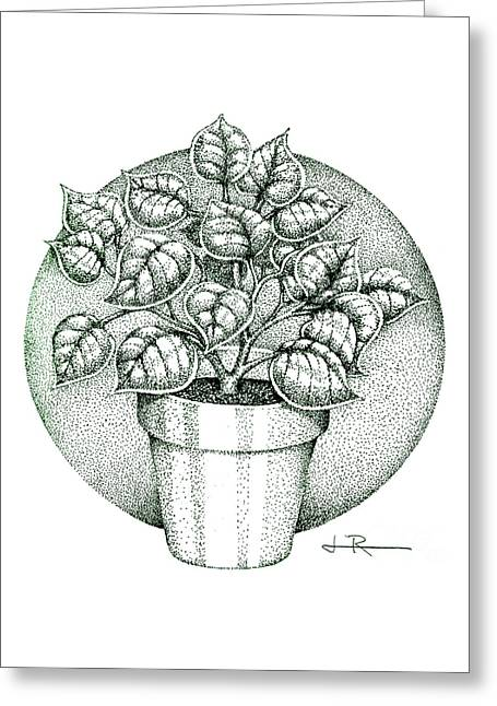 Philodendron 2  Greeting Card by Jim Rehlin