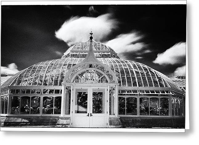 Phipps Conservatory I Greeting Card by Robert Fawcett