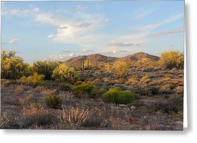 Cave Creek Cowboy Greeting Cards - Phoenix Sunset Greeting Card by Gordon Beck