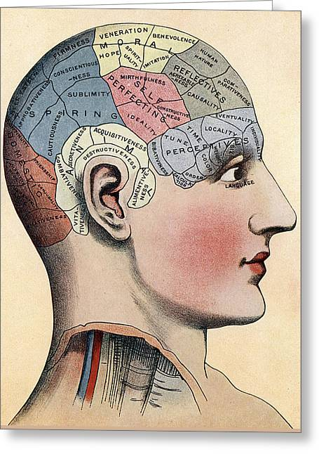Phrenology Chart Greeting Card by American School