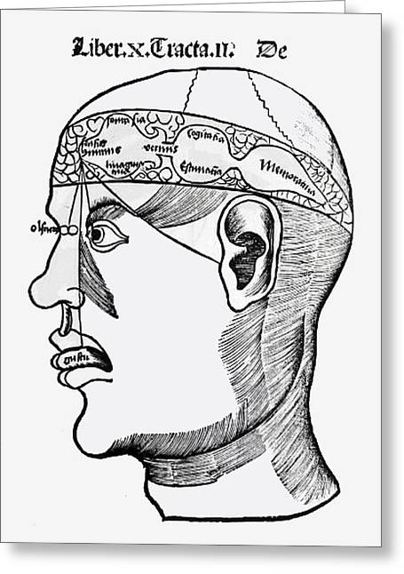 Phrenology Greeting Card by French School