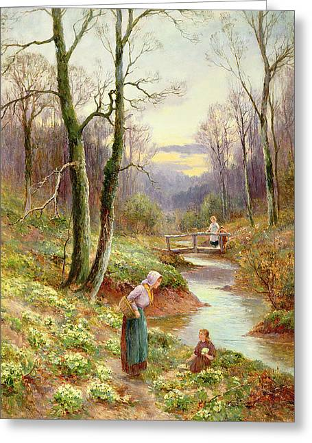 Picking Primroses  Greeting Card by Ernest Walbourn