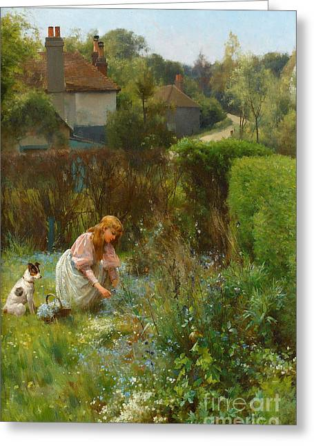 Picking Wild Flowers In The Hedgerow Greeting Card by Alfred Glendening Jr