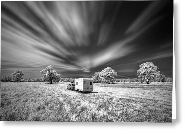 Infrared Greeting Cards - Picnic Greeting Card by Piotr Krol (bax)