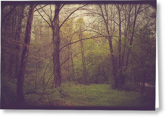 Picnic Greeting Cards - Picnic Greeting Card by Shane Holsclaw