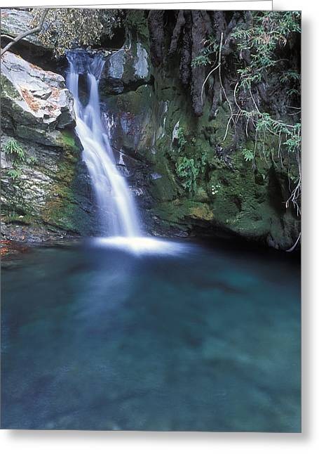Ventana Greeting Cards - Pico Blanca Falls In Los Padres Greeting Card by Rich Reid