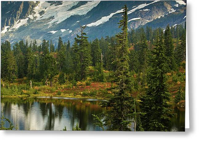 Picture Lake Vista Greeting Card by Mike Reid