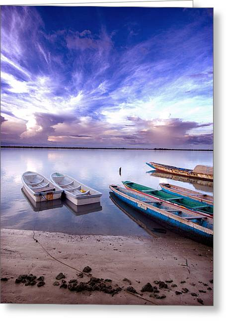 Boats In Water Greeting Cards - Picture of senegalese boats captured in Senegal  Greeting Card by Eduardo Huelin