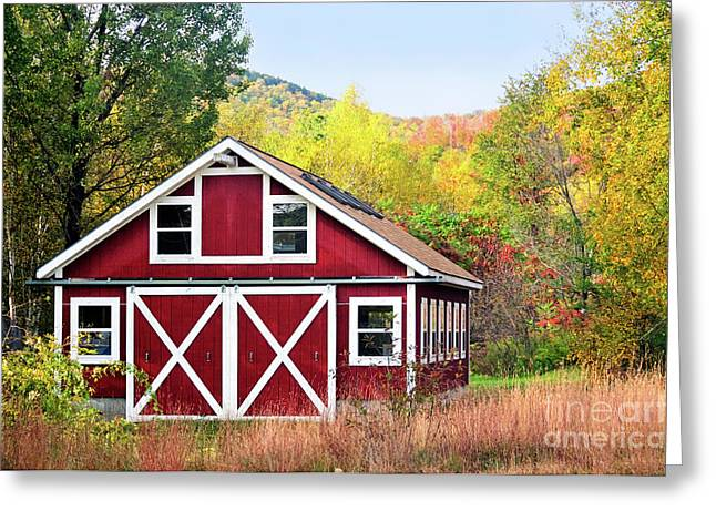 Living Space Greeting Cards - Picturesque Greeting Card by Betty LaRue