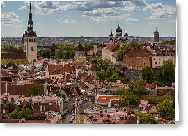Tallinn Mixed Media Greeting Cards - Pidgeon Eye View Greeting Card by Capt Gerry Hare