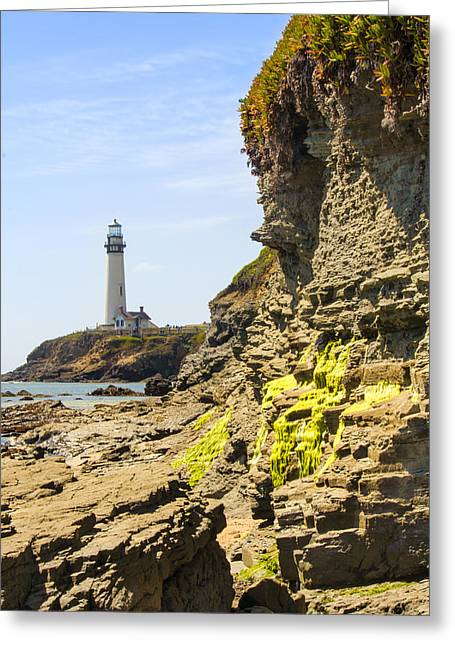 Algae Greeting Cards - Pidgeon Point Lighthouse Greeting Card by Bryant Coffey
