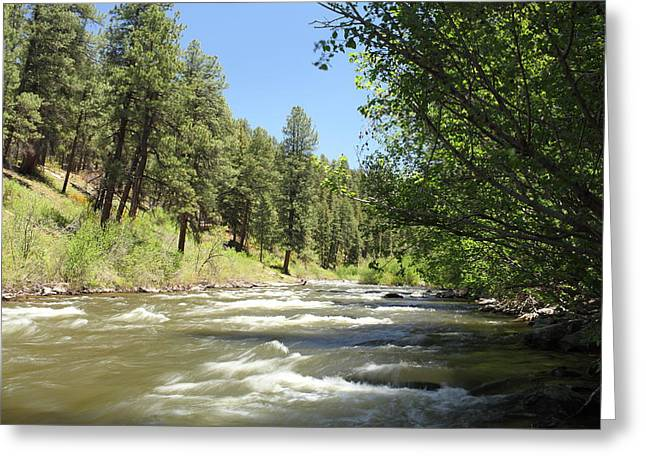Old Growth Greeting Cards - Piedra River Greeting Card by Eric Glaser