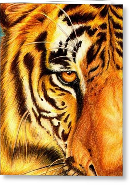 Cat Drawings Greeting Cards - Piercing Glance Greeting Card by Sheryl Unwin