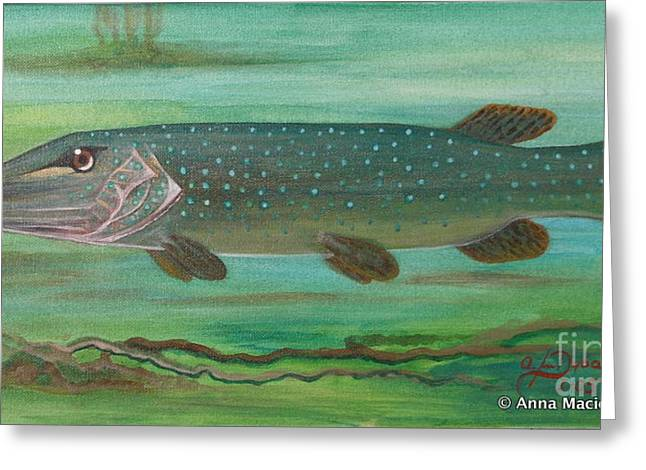 Polscy Artysci Greeting Cards - Pike Greeting Card by Anna Folkartanna Maciejewska-Dyba