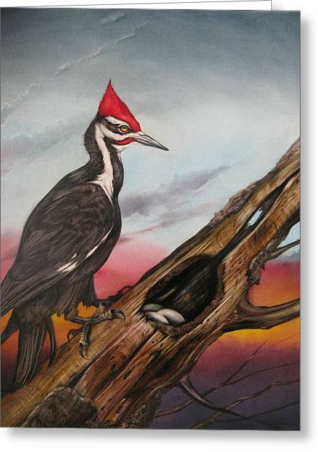 Pileated Woodpecker Greeting Card by Martin Katon