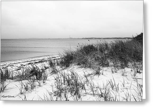 Beach Roses Greeting Cards - Pilgrim Monument from the Beach Provincetown Massachusetts Greeting Card by Michelle Wiarda
