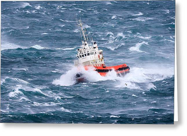 Recently Sold -  - Popular Greeting Cards - Pilot Boat Greeting Card by Ingi T. Bjornsson
