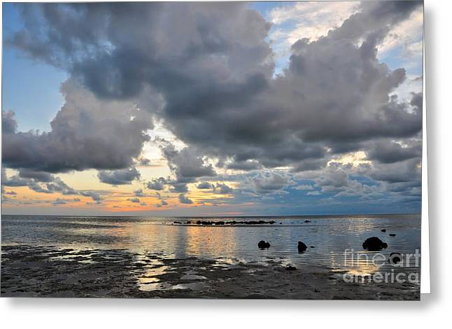 Sunset Greeting Cards Greeting Cards - Pine Island Sunset Greeting Card by Debbie Green