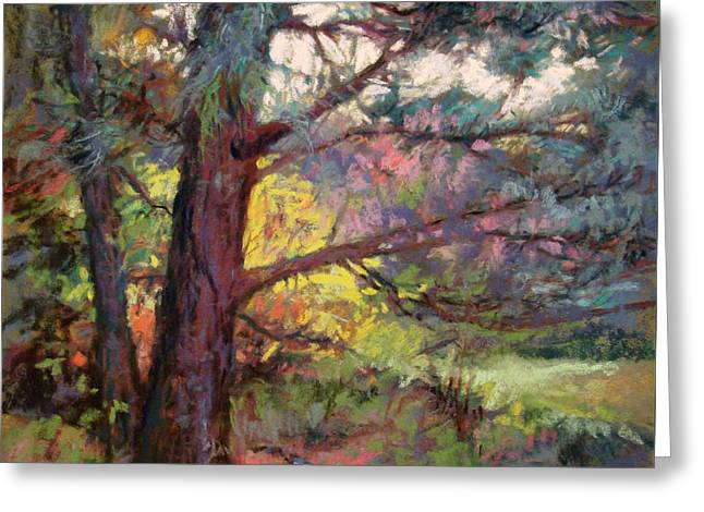 Pine Tree Dance Greeting Card by Donna Shortt