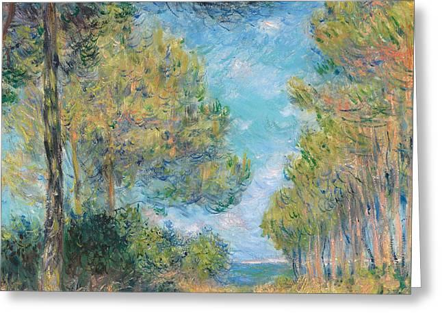 Blue And Green Greeting Cards - Pine Tree Path at Varengeville Greeting Card by Claude Monet