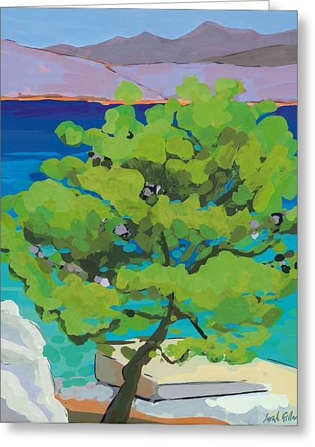 Coastal Trees Greeting Cards - Pine Tree Greeting Card by Sarah Gillard