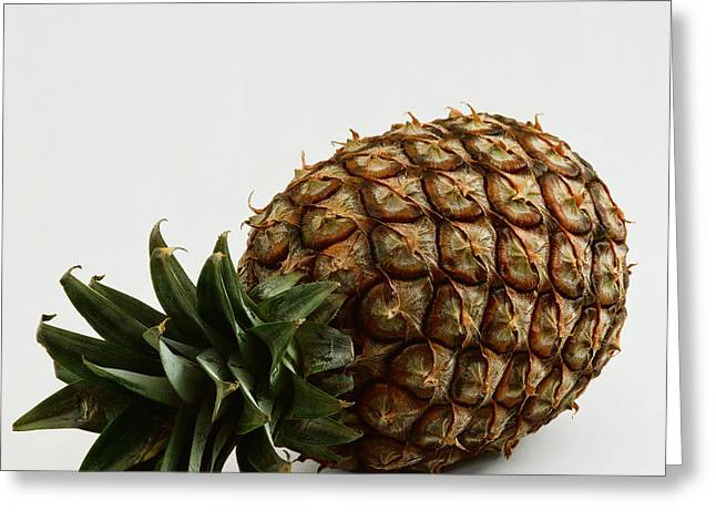 Pineapple Greeting Card by G.B�ttner/Naturbild/Okapia