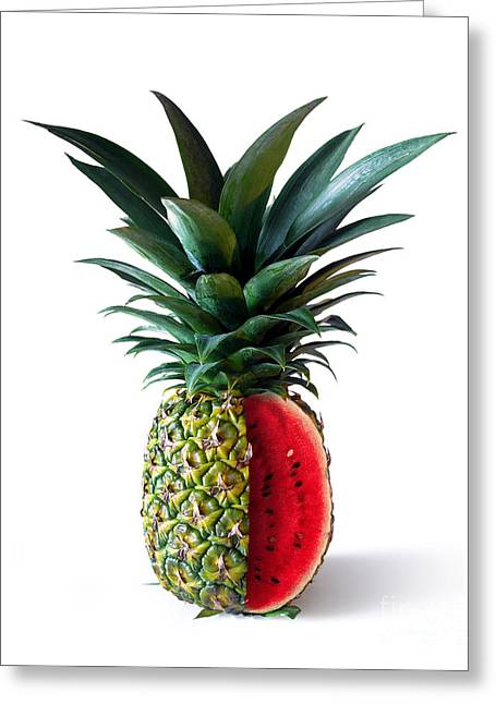 Combinations Greeting Cards - Pinemelon 2 Greeting Card by Carlos Caetano