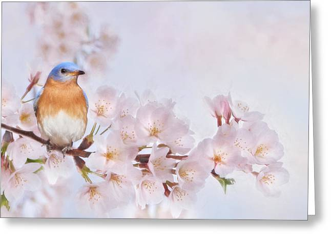 Crabapple Cards Greeting Cards - Pink and Blue Greeting Card by Lori Deiter