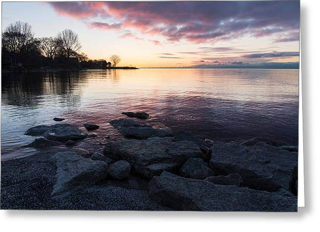 Gloaming Greeting Cards - Pink and Gray Placidity Greeting Card by Georgia Mizuleva