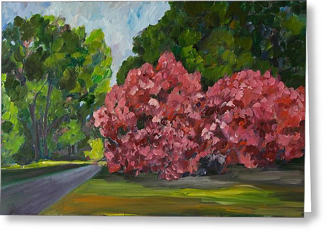 Pensive Greeting Cards - Pink Blossoms Greeting Card by Jinny Slyfield
