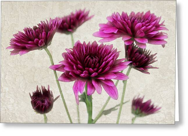 Interior Still Life Greeting Cards - Pink Bouquet Greeting Card by Judy Vincent