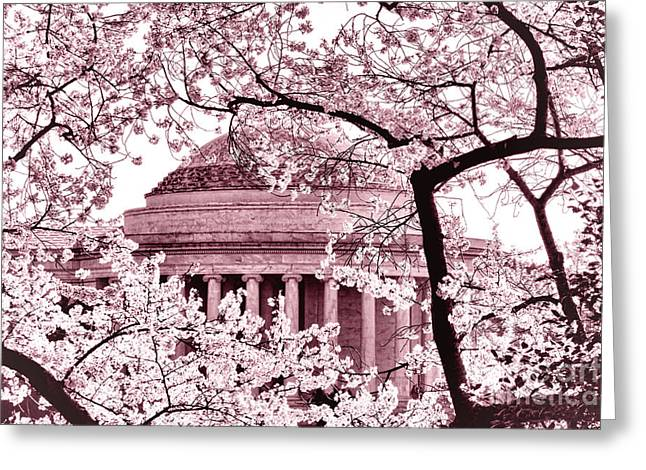 Pink Cherry Trees At The Jefferson Memorial Greeting Card by Olivier Le Queinec
