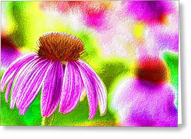 Abstracted Coneflowers Paintings Greeting Cards - Pink Coneflower Greeting Card by Lanjee Chee