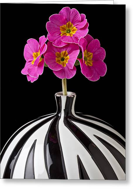 Vulgaris Greeting Cards - Pink English Primrose Greeting Card by Garry Gay