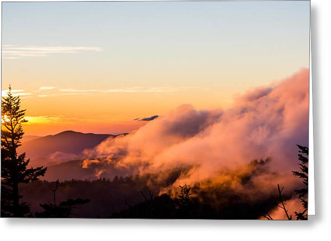 Gatlinburg Tennessee Greeting Cards - Pink Fog at Clingmans Dome Greeting Card by Shelby Young