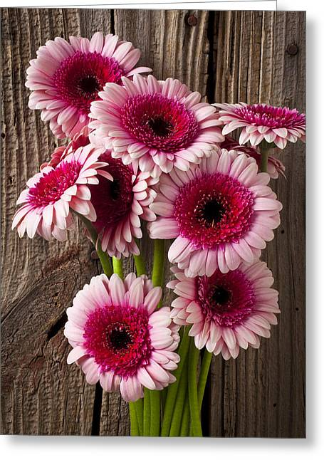 Vibrant Photographs Greeting Cards - Pink Gerbera daisies Greeting Card by Garry Gay