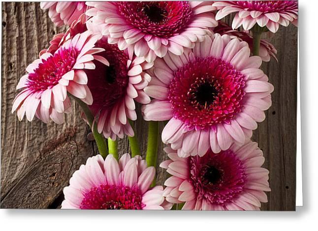 Pink Gerbera daisies Greeting Card by Garry Gay