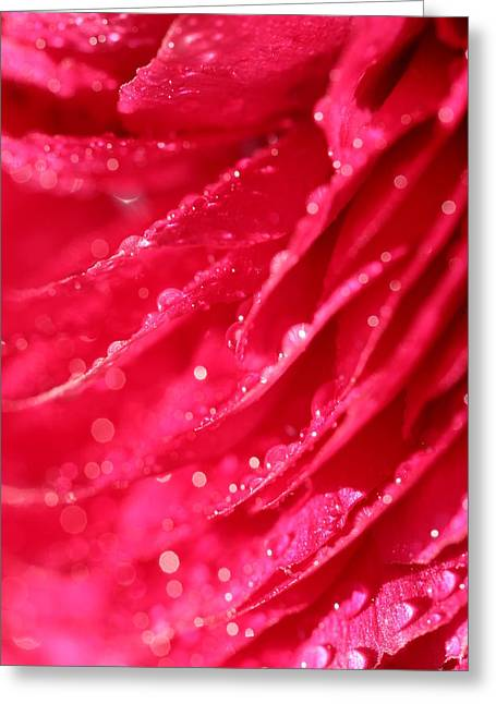 Pink Greeting Card by Heike Hultsch