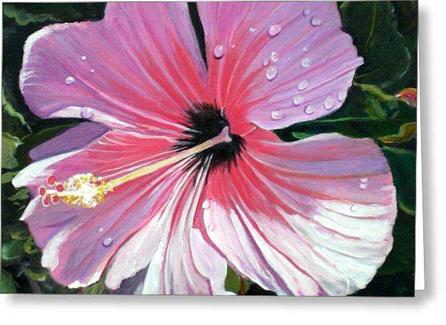 Marionette Greeting Cards - Pink Hibiscus with Raindrops Greeting Card by Marionette Taboniar